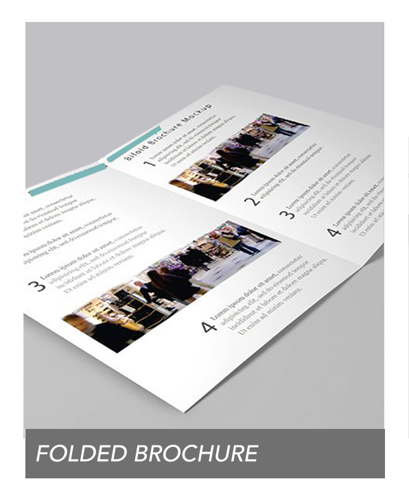 folded brochure 1